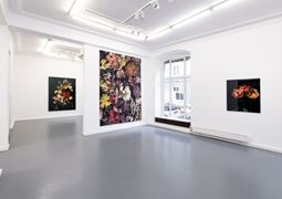 Andreas Binder Gallery